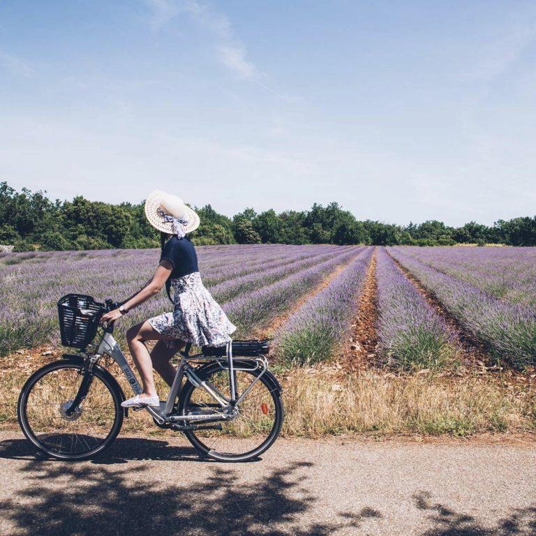 1. Bike Ride