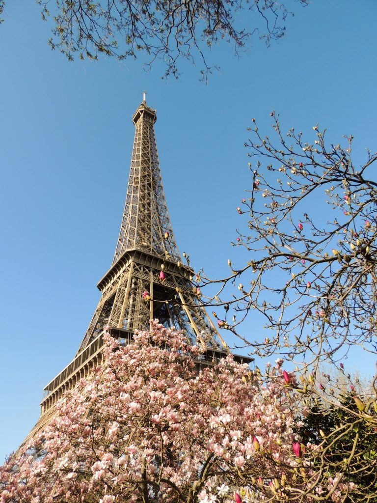 ASV IMG PAR Eiffel