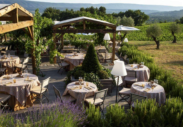 La Coquillade_Jardin dans les Vignes